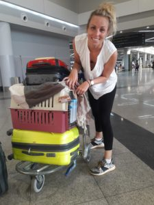 Airport with a cat on trolly