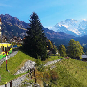 View of Wengen from the Train